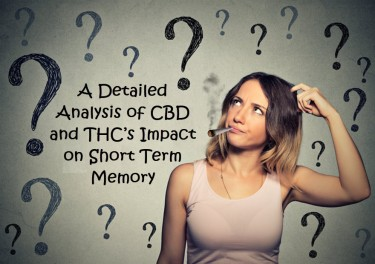 THC ON MEMORY ISSUES