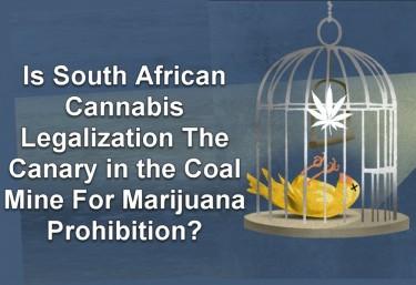 SOUTH AFRICA LEGALIZES MARIJUANA