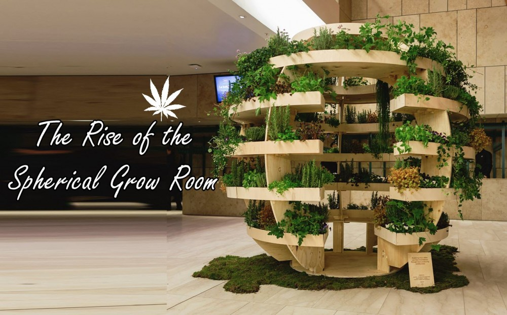 cannabis spherical grow rooms