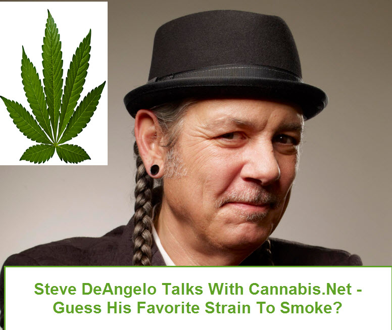 steve deangelo cannabis interview