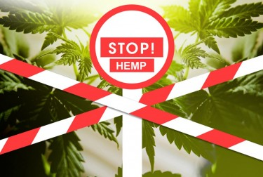 stop hemp in Humboldt