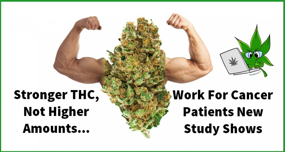 HIGHER THC STRAINS FOR CANCER PATIENTS