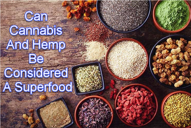 CANNABIS HEMP SUPERFOOD