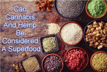 IS HEMP A SUPERFOOD