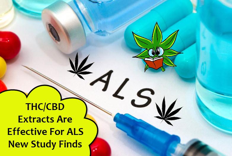 cannabis for als