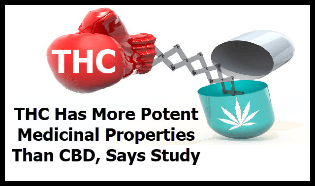 thc as medicine over cbd