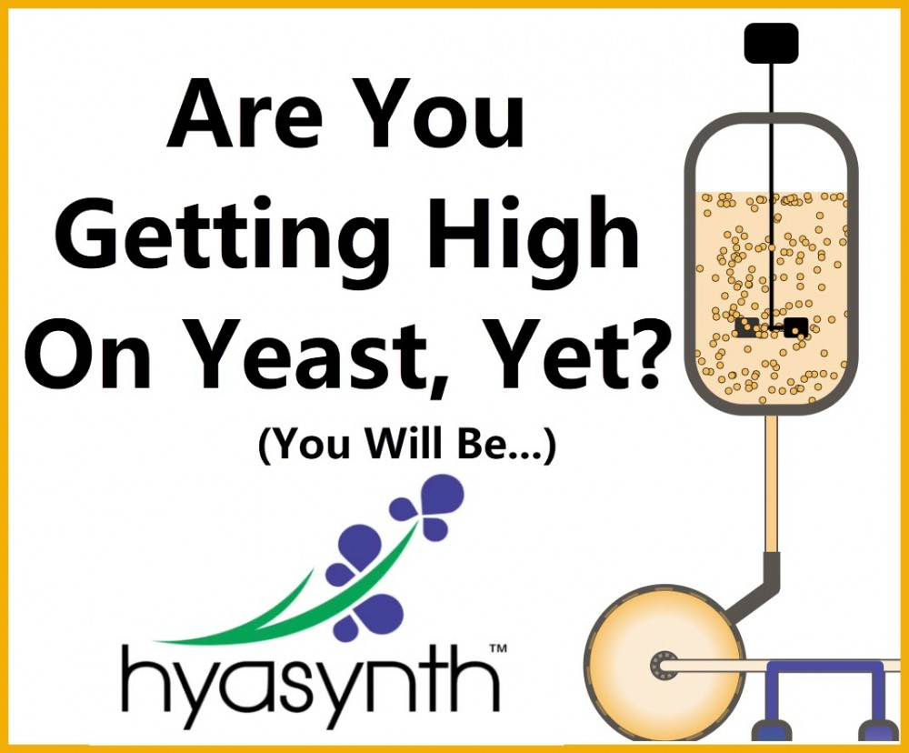 ARE YOU GETTING HIGH ON YEAST