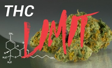 thc limits and restrictions