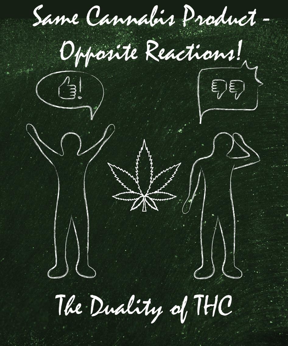 thc opposite reactions
