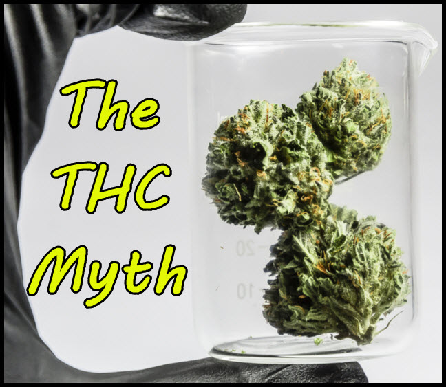 the thc myth how consumers will buy cannabis in the future