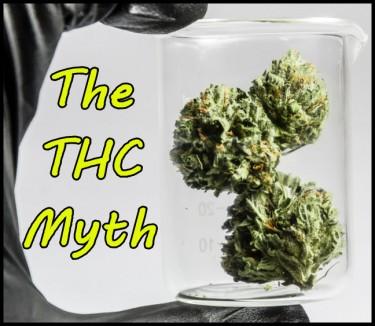 THE THC MYTH