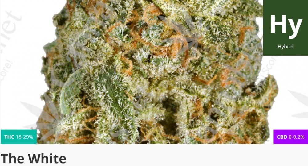 the white strain