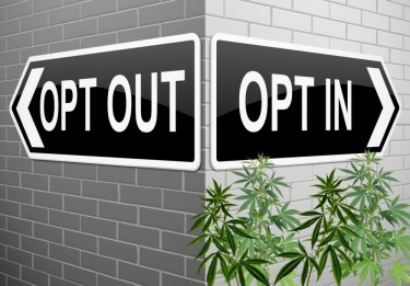 towns opting out of weed