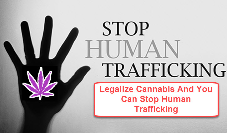 HUMAN TRAFFICKING OR CANNABIS