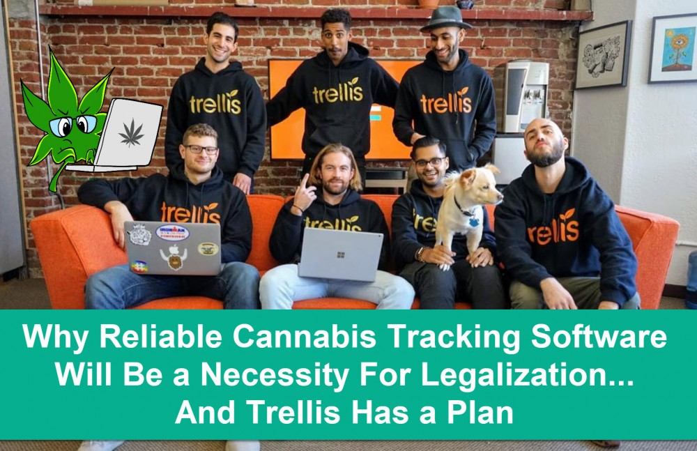 trellis software team