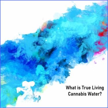 TRUE LIVING CANNABIS WATER