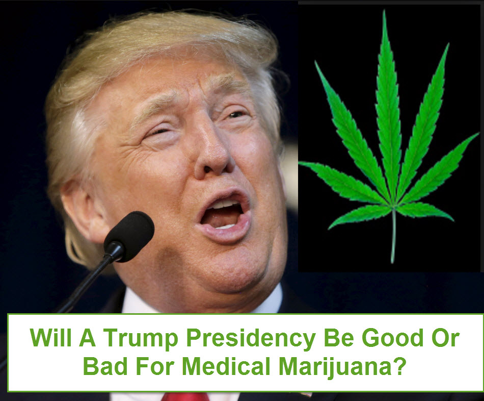 WILL A TRUMP PRESIDENCY KILL MARIJUANA
