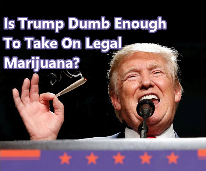 TRUMP ON MEDICAL CANNABIS