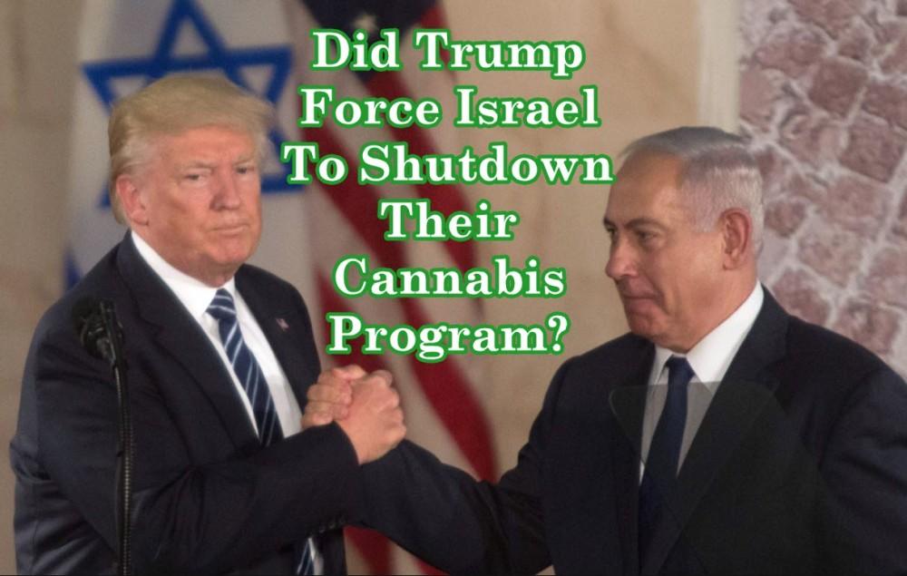 trump in cannabis in israel
