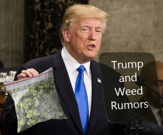 Trump on Weed Rumors