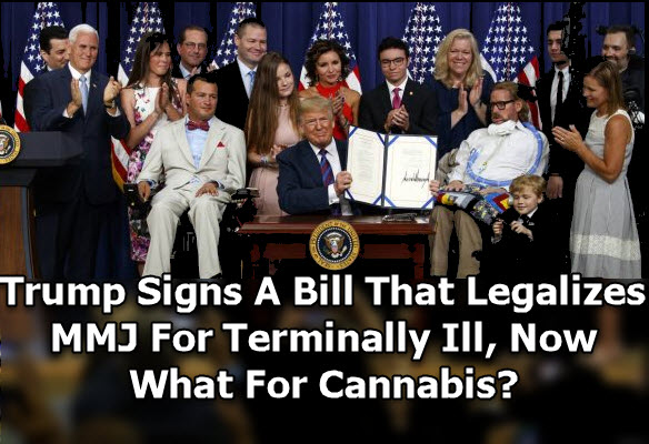Trump signs right to try bill
