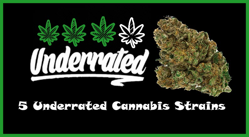 underrated cannabis strains