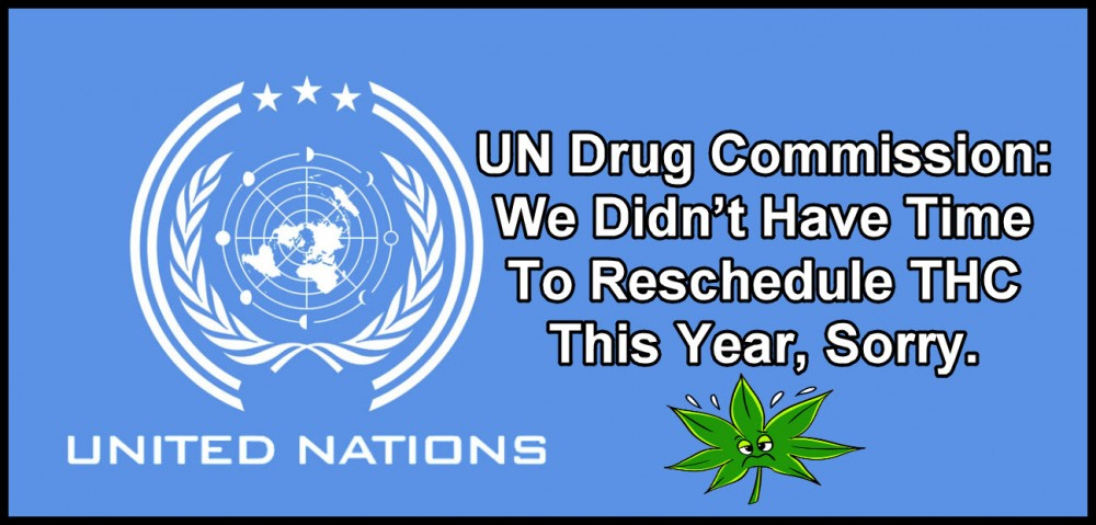 UN on THC scheduling