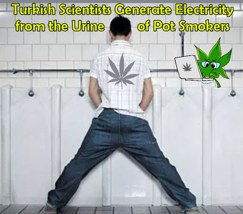 thc in urine for electricity