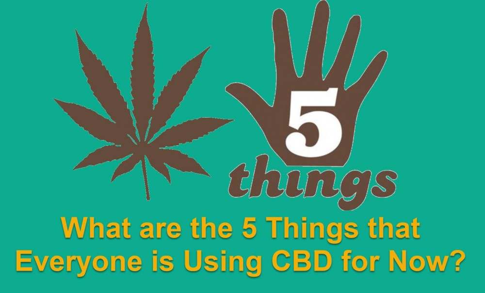 THINGS PEOPLE USE CBD FOR
