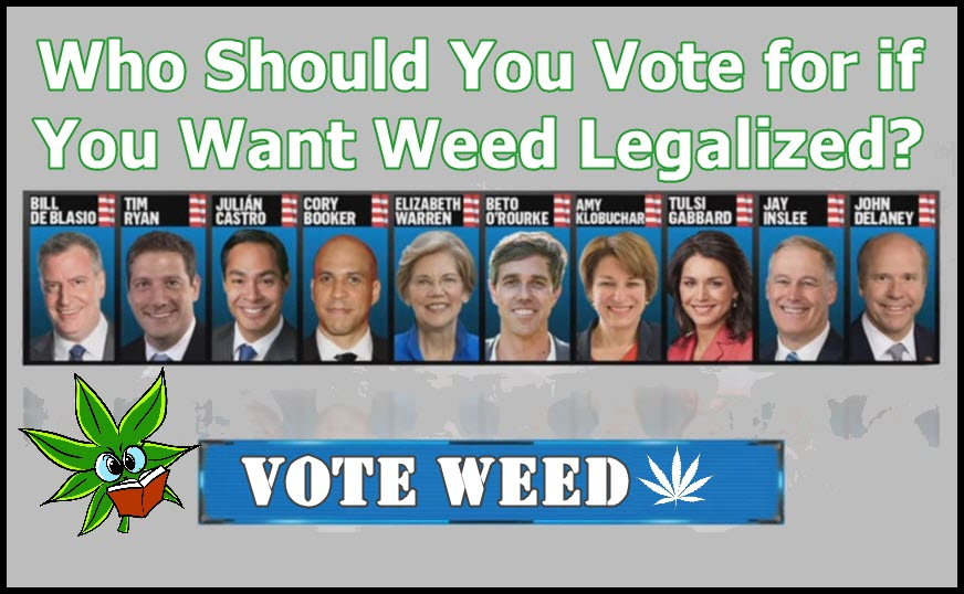 HOW SHOULD YOU VOTE FOR FOR WEED