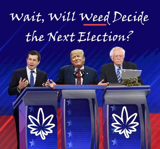 voting for marijuana