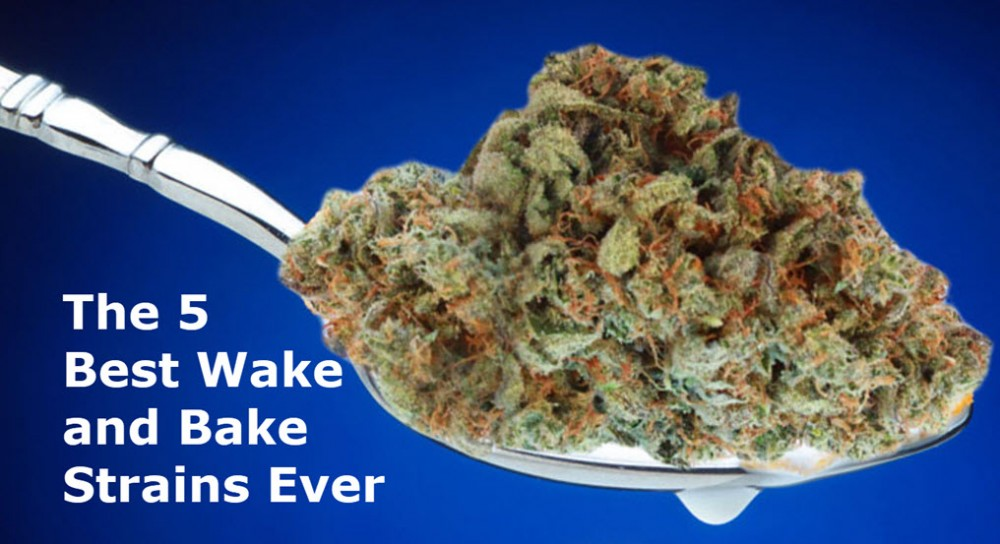 wake and bake strains