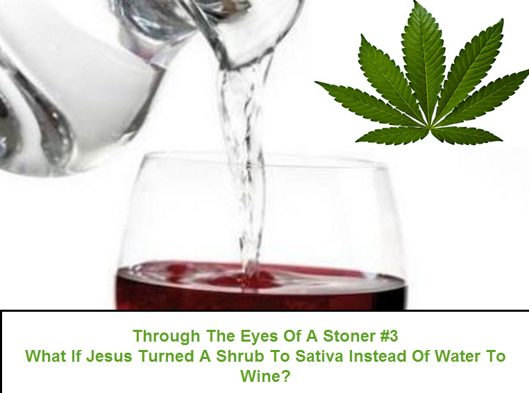 WATER TO WINE SHRUB TO SATIVA