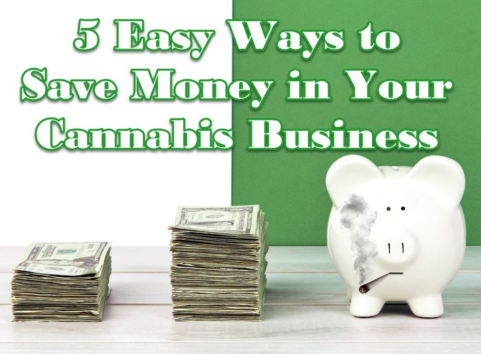 ways to save money for pot companies