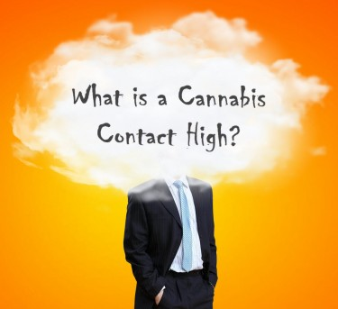 WHAT IS A CONTACT HIGH