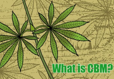 WHAT IS CBM FROM HEMP