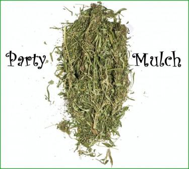 party mulch marijuana