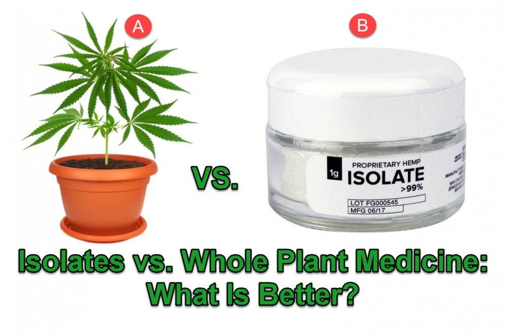 ISOLATES OR WHOLE PLANT CANNABIS