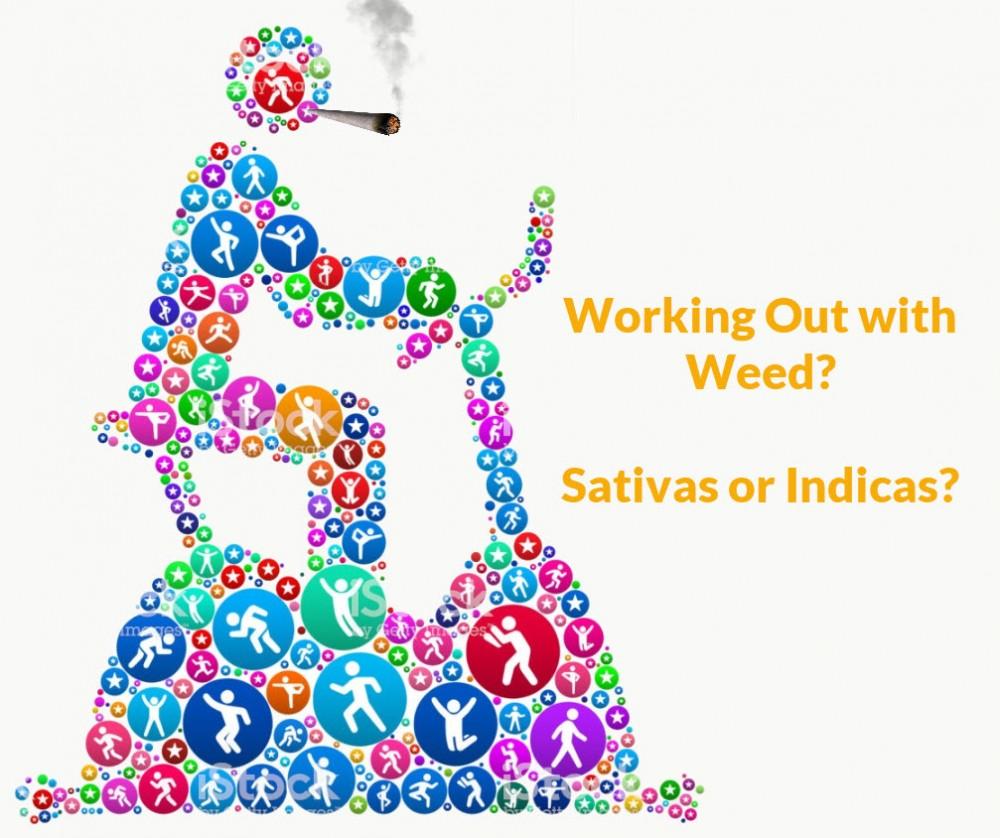 cannabis workout sativa indica