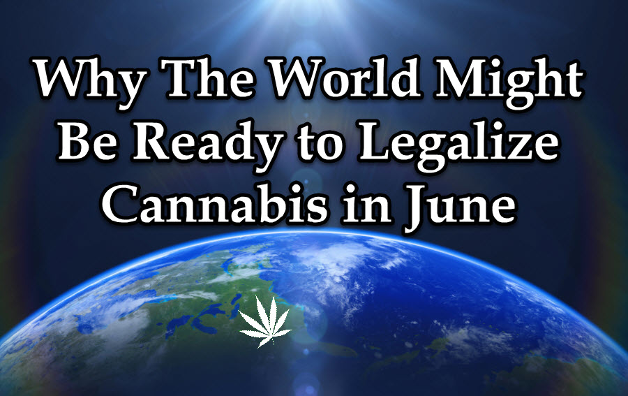 WORLD WIDE MARIJUANA LEGALIZATION