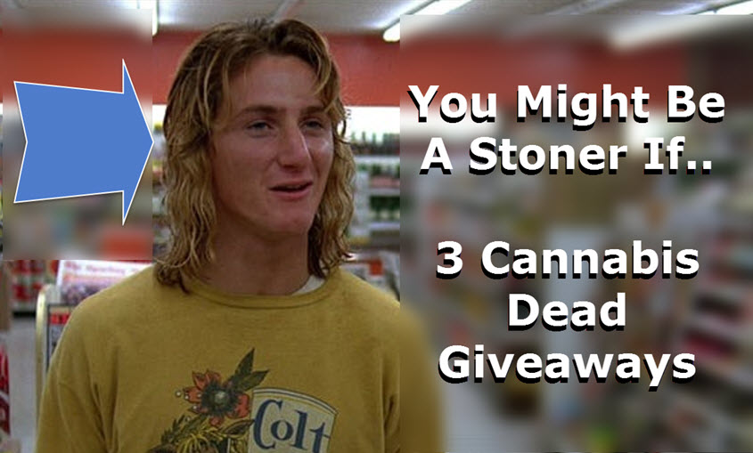 YOU MIGHT BE A STONER IF..